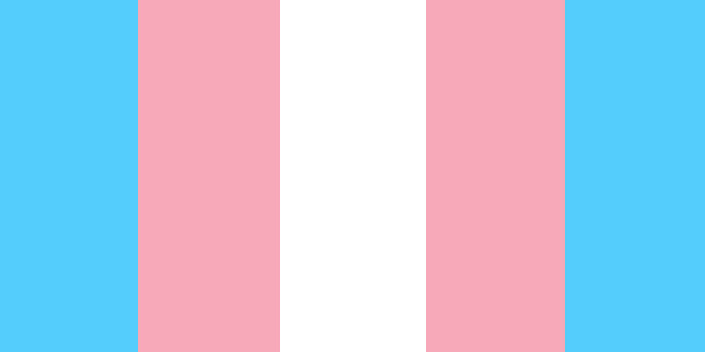 The transgender/nonbinary flag in blue, pink, white, pink, blue stripes.